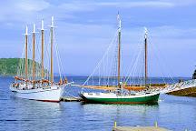 Village Green, Bar Harbor, United States