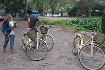 Bike Rental & Tours Havana, Havana, Cuba