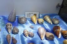 Isfahan Seashell Museum, Isfahan, Iran