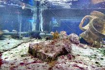 Aquarium Cap Blanc, Sant Antoni de Portmany, Spain
