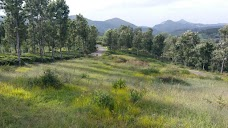 Holiday home property ooty