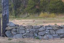 Cambria Dog Park, Cambria, United States