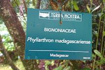 Terra Nostra Gardens, Furnas, Portugal