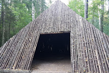 Pokaini Forest, Dobele, Latvia