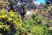 Parque Cedro Salazar, Bogota, Colombia