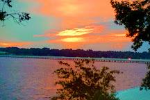 Lake Palestine, Tyler, United States