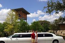 Texas Grapes Wine Tours, Fredericksburg, United States