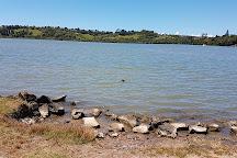 Orakei Basin, Auckland Region, New Zealand
