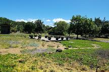 Maui Nui Botanical Gardens, Kahului, United States