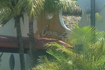 La Covacha, Miami, United States