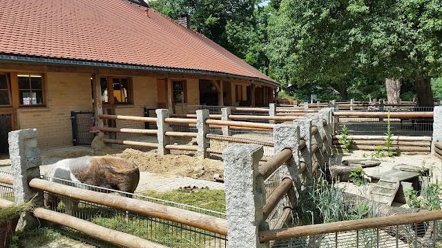 Görlitz Zoo