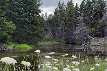 Groves Point Provincial Park, Cape Breton Island, Canada