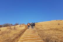 Saebyeol Oreum, Jeju, South Korea