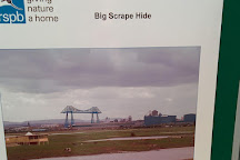 RSPB Saltholme, Middlesbrough, United Kingdom