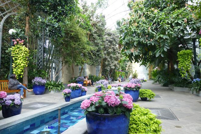 Visit United States Botanic Garden on your trip to Washington DC