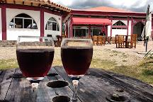 Vinedo Umana Dajud, Villa de Leyva, Colombia