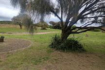 Discovery Bay Coastal Park, Nelson, Australia