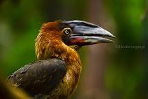 Magaul Bird Park, Subic Bay Freeport Zone, Philippines