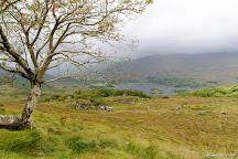 Ladies' View, Killarney, Ireland