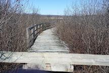 Marais de la Riviere aux Cerises, Magog, Canada
