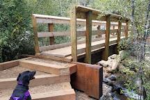 Seven Bridges Trail, Colorado Springs, United States