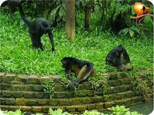 Agencia de viajes Sudamerica Tour 3
