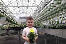 Selmi's Greenhouse and Farm Market, Rock Falls, United States