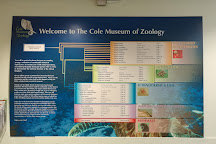The Cole Museum of Zoology, Reading, United Kingdom