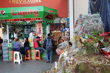 Mercado 20 de Noviembre, Oaxaca, Mexico