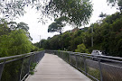 Cape Byron Walking Track