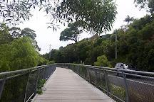 Cape Byron Walking Track, Byron Bay, Australia