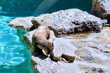 Idaho Falls Zoo at Tautphaus Park, Idaho Falls, United States