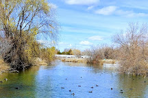 Wilson Springs Ponds, Nampa, United States