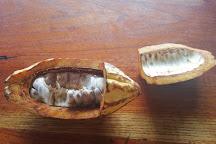 Yumbos Chocolate, Mindo, Ecuador