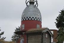 Aukrust museum, Alvdal, Norway