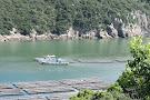 Kashira Island