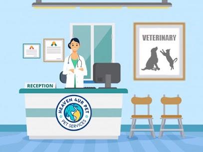 Veterinary dentist near me