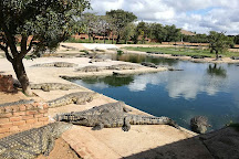 Thaba Kwena Crocodile Farm, Modimolle (Nylstroom), South Africa