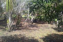 Orchid Garden Eco-Village Museum Belize, Belize City, Belize