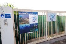 PlongeeO, Hyeres, France