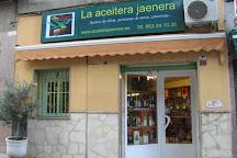 La Aceitera Jaenera, Jaen, Spain