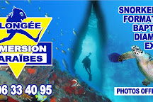 Plongee Immersion Caraibes, Le Marin, Martinique