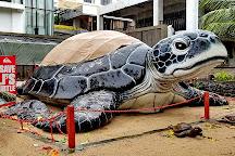 Bali Sea Turtle Society (BSTS), Kuta, Indonesia