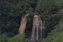 Opaekaa Falls, Kauai, United States