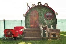 Asch Reindeer