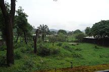 Limbe Wildlife Centre, Limbe, Cameroon