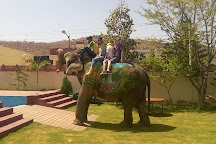Eleday, Jaipur, India