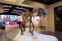 Fort Worth Museum of Science & History, Fort Worth, United States