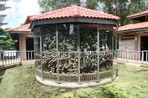 Cambodia Landmine Museum, Siem Reap, Cambodia