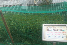 Miyako Ecology Center, Kyoto, Japan